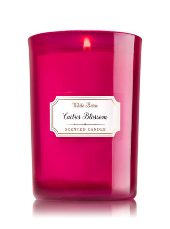 Cactus Blossom Medium Candle - Bath And Body Works
