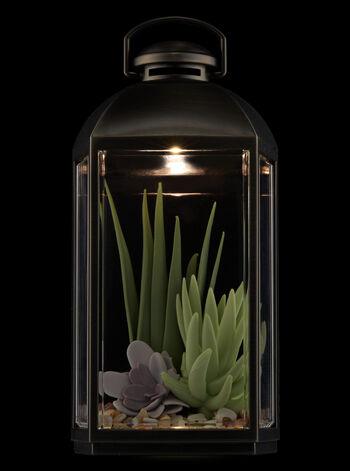 Succulent Lantern Nightlight Wallflowers Fragrance Plug