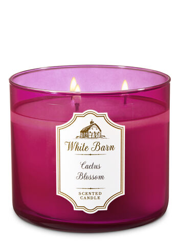 White Barn Cactus Blossom 3-Wick Candle - Bath And Body Works