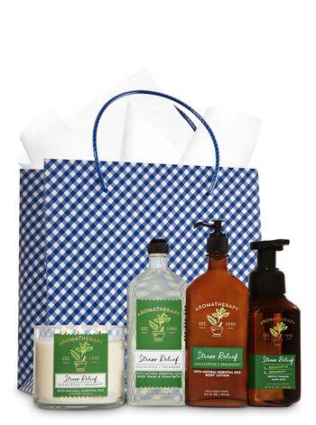 Stress Relief - Eucalyptus & Spearmint Ultimate Fragrance Fan Gift Kit - Bath And Body Works
