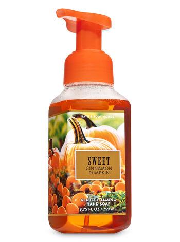 Sweet Cinnamon Pumpkin Gentle Foaming Hand Soap - Bath And Body Works