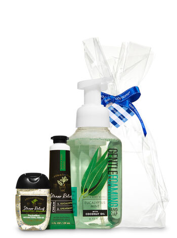 Eucalyptus Spearmint Happy Hands Gift Kit - Bath And Body Works