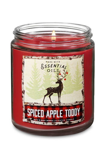 Spiced Apple Toddy Single Wick Candle - Bath And Body Works