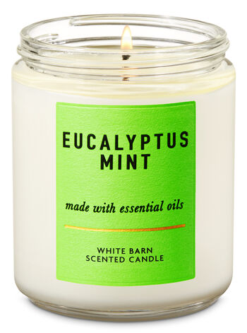 Eucalyptus Mint Single Wick Candle - Bath And Body Works