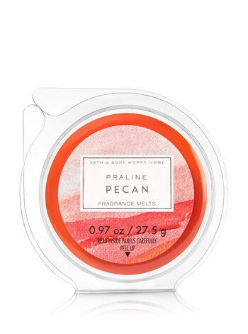 Praline Pecan Fragrance Melt - Bath And Body Works