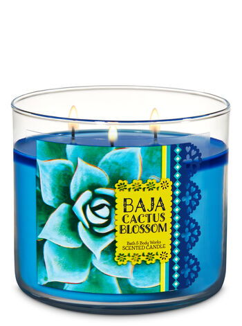 Baja Cactus Blossom 3-Wick Candle - Bath And Body Works