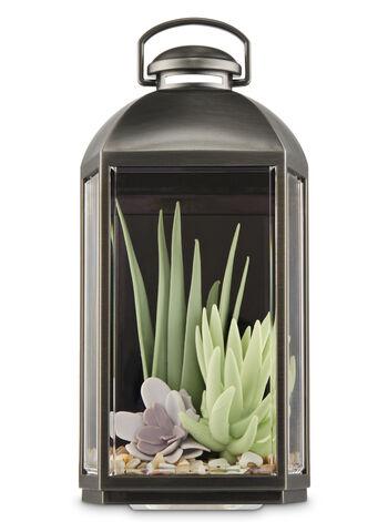 Succulent Lantern Wallflowers Fragrance Plug