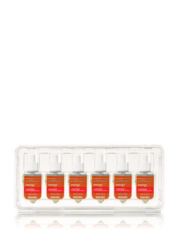 Orange Ginger 6-Pack Wallflowers Sampler