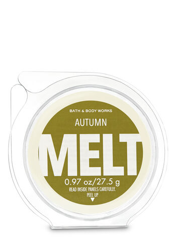 Autumn Fragrance Melt - Bath And Body Works