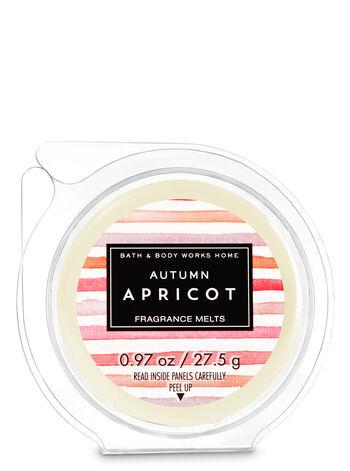 Autumn Apricot Fragrance Melt - Bath And Body Works
