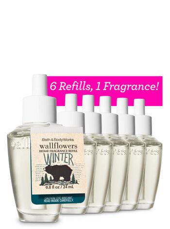 Winter 6-Pack Wallflowers Sampler