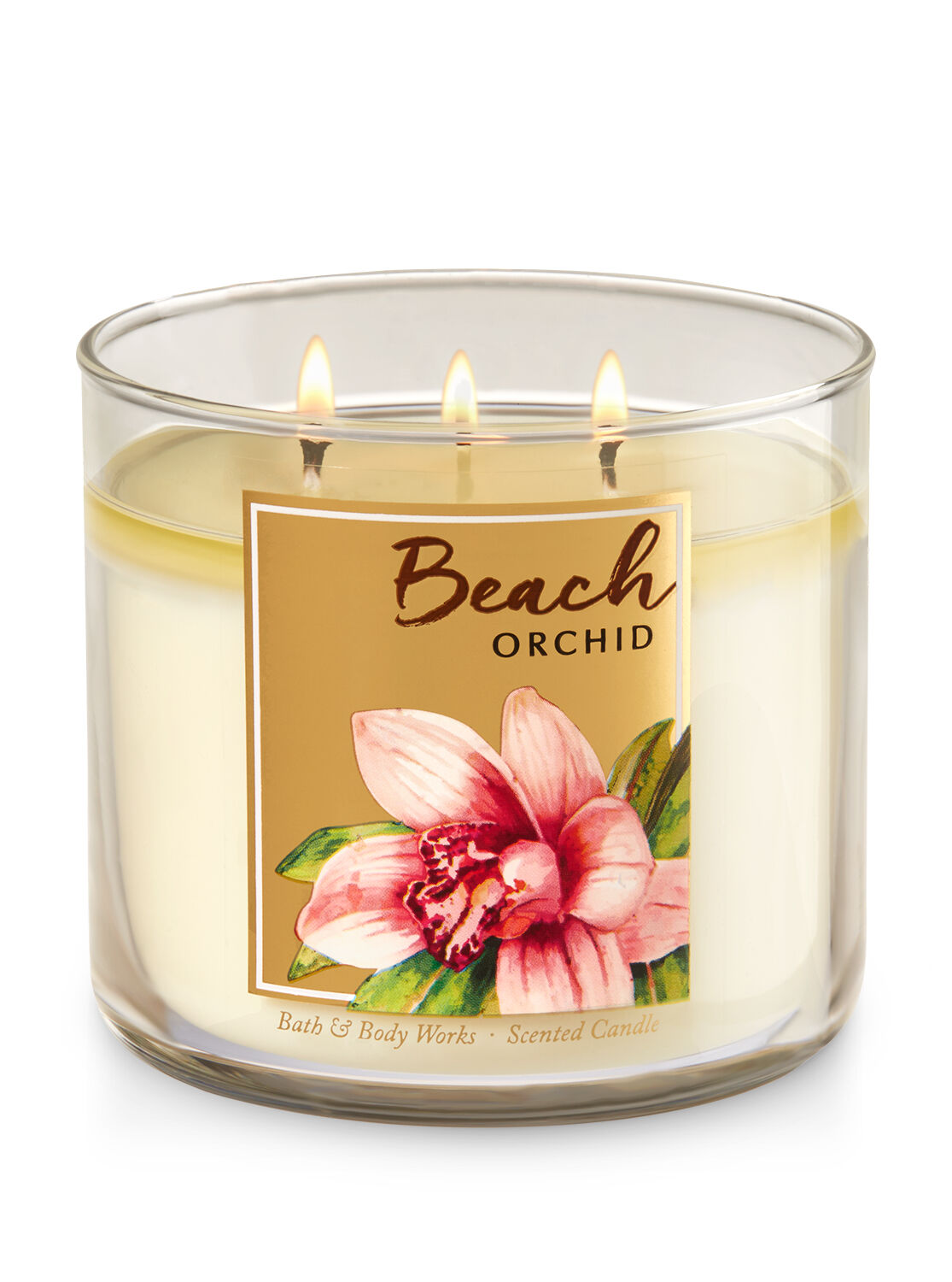 Beach Orchid 3 Wick Candle Bath And Body Works