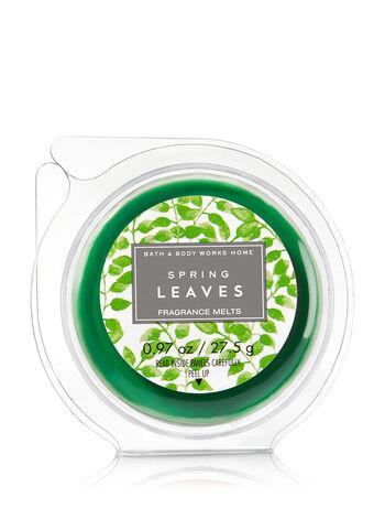 Spring Leaves Fragrance Melt - Bath And Body Works