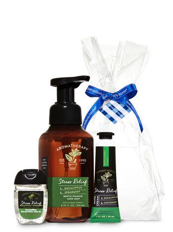 Eucalyptus Spearmint Aromatherapy Gift Kit - Bath And Body Works
