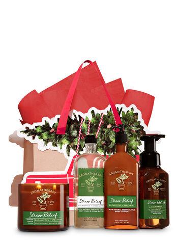 Stress Relief - Eucalyptus & Spearmint Truck Tree Trimmer Gift Kit