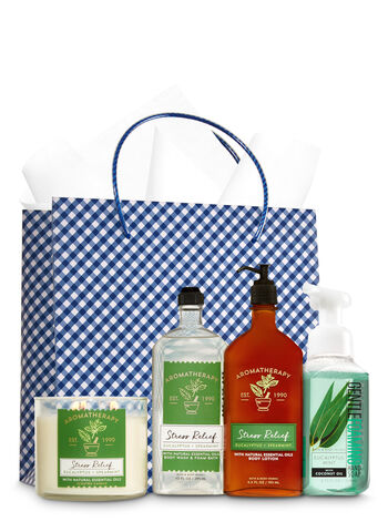 Aromatherapy Eucalyptus & Spearmint Ultimate Fragrance Fan Gift Kit - Bath And Body Works