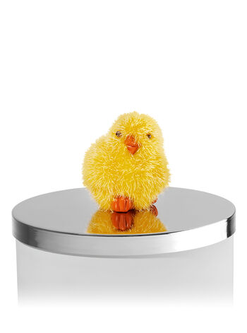 Chick Magnet 3-Wick Candle Magnet