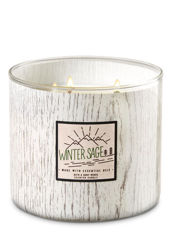 White Barn Winter Sage 3-Wick Candle - Bath And Body Works