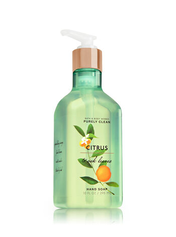 Citrus & Oak Leaves Purely Clean Hand Soap - Bath And Body Works