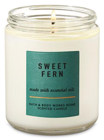 Sweet Fern Single Wick Candle