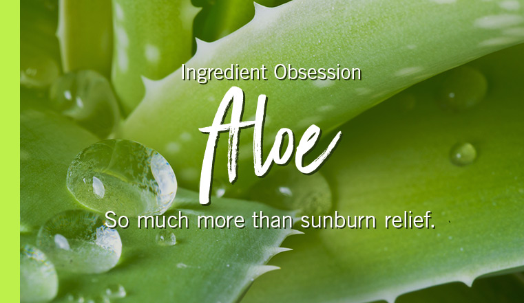 Ingredient Obsession. Aloe. So much more than sunburn relief.