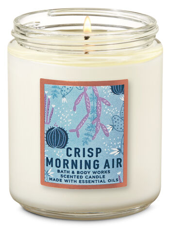Crisp Morning Air Single Wick Candle - Bath And Body Works