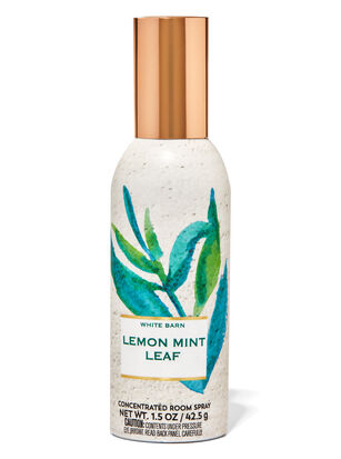 Lemon Mint Leaf Concentrated Room Spray