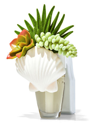 Shell & Succulents Wallflowers Fragrance Plug