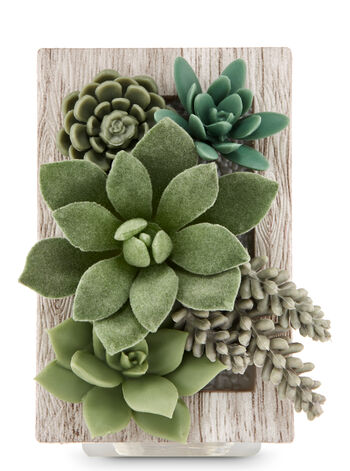 Framed Succulents Wallflowers Fragrance Plug