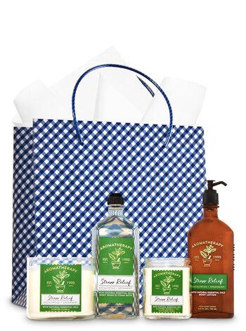 Eucalyptus Spearmint Ultimate Fragrance Fan Gift Kit - Bath And Body Works