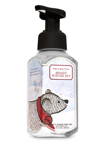 Bright Winter Sky Gentle Foaming Hand Soap - Bath And Body Works