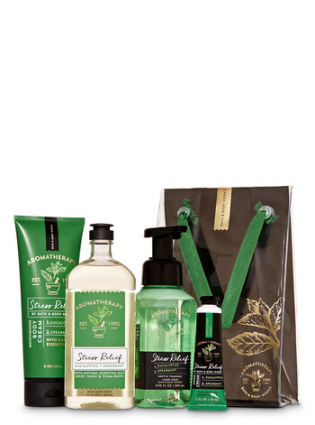 Eucalyptus Spearmint Gift Set - Bath And Body Works
