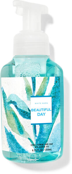 Beautiful Day Gentle Foaming Hand Soap