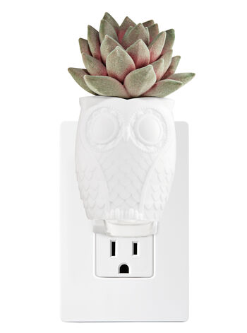 Succulent & Owl Wallflowers Fragrance Plug