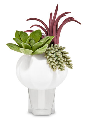 Succulent Pumpkin Planter Wallflowers Fragrance Plug
