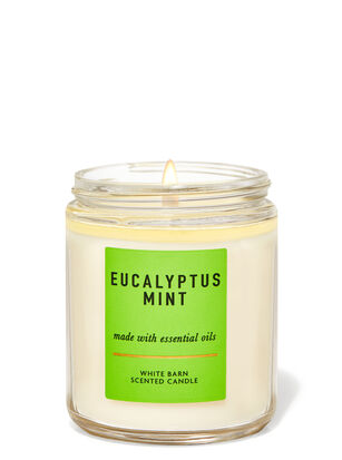 Eucalyptus Mint Single Wick Candle