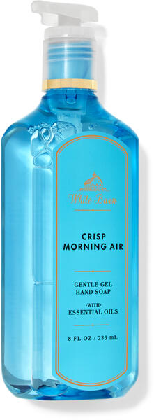 Crisp Morning Air Gentle Gel Hand Soap