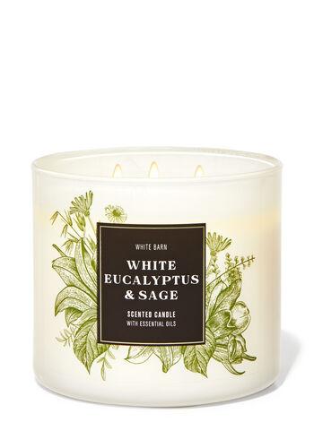 White Eucalyptus & Sage 3-Wick Candle