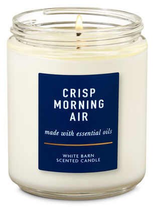 Crisp Morning Air Single Wick Candle