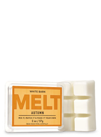 Autumn Fragrance Melt - Bath And Body Works