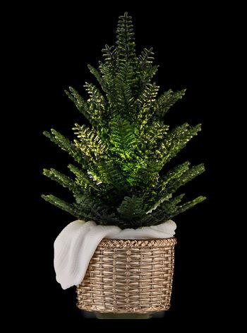 Potted Pine Nightlight Wallflowers Fragrance Plug