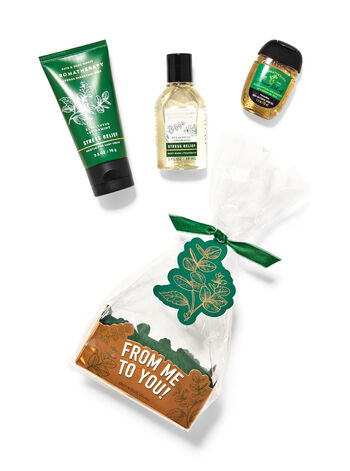 Eucalyptus Spearmint Mini Gift Set