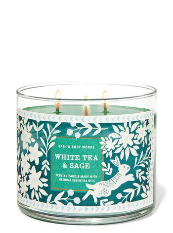 White Tea & Sage 3-Wick Candle