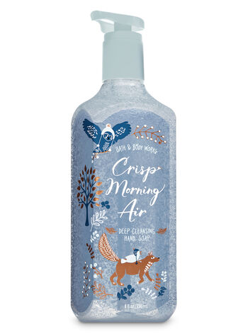 Crisp Morning Air Deep Cleansing Hand Soap - Bath And Body Works