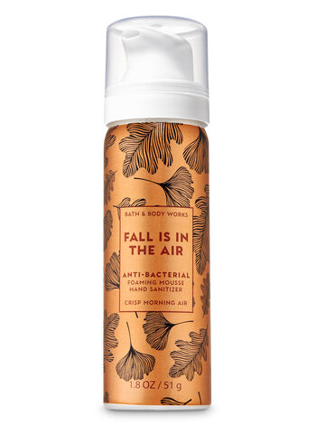 Crisp Morning Air Foaming Hand Sanitizer - Bath And Body Works