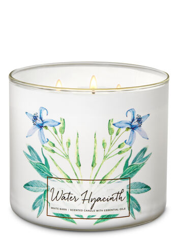 Water Hyacinth 3-Wick Candle - Bath And Body Works