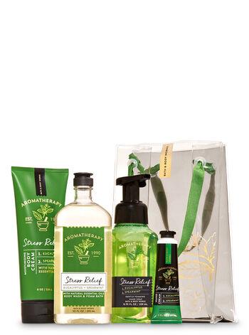 Eucalyptus Spearmint Aromatherapy Gift Bag Set - Bath And Body Works