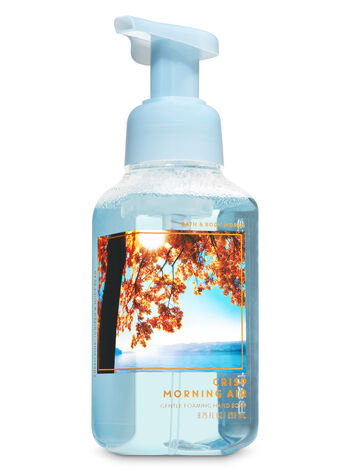 Crisp Morning Air Gentle Foaming Hand Soap - Bath And Body Works