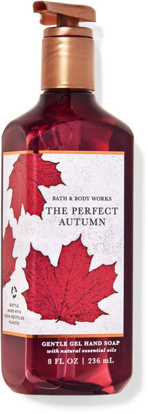 The Perfect Autumn Gentle Gel Hand Soap