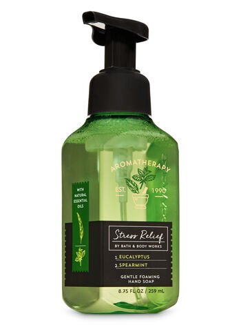 Aromatherapy Eucalyptus Spearmint Gentle Foaming Hand Soap - Bath And Body Works